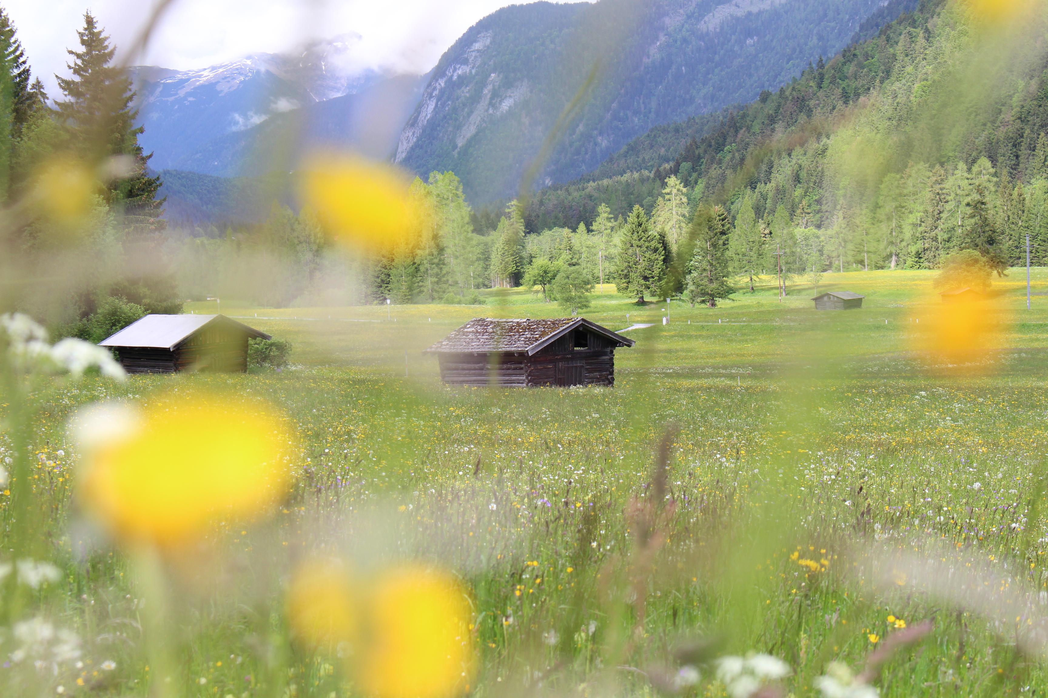 Erholung pur in Tirol